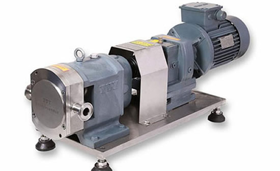 Introduction to the structure classification and characteristics of sanitary rotor pumps