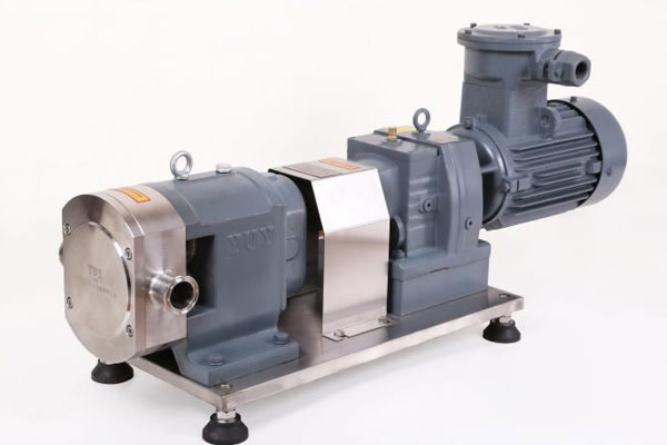 Rotor pump + explosion proof device