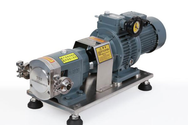 Rotor pump + ordinary stepless variable speed type